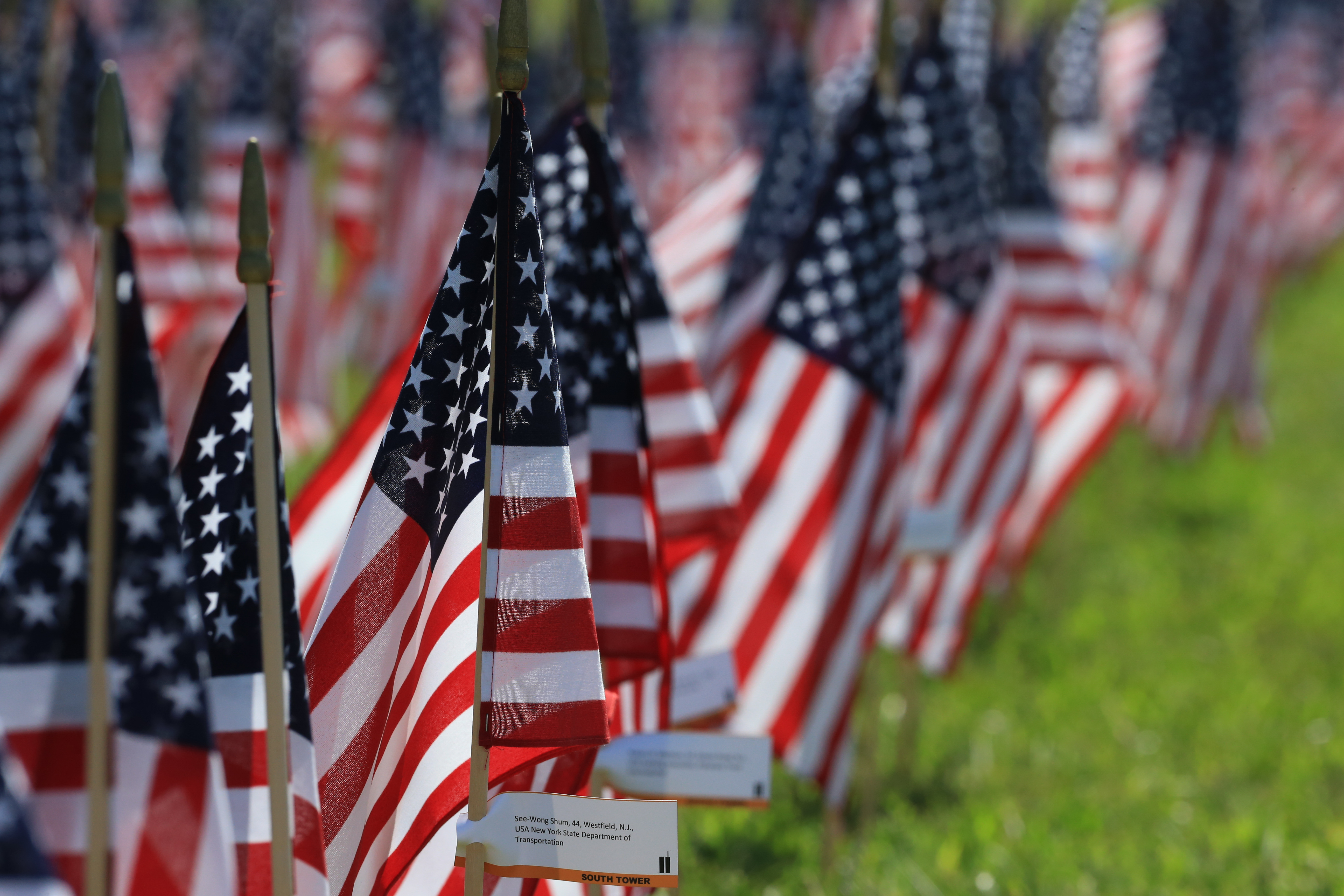 Events planned to mark National Day of Service and Remembrance