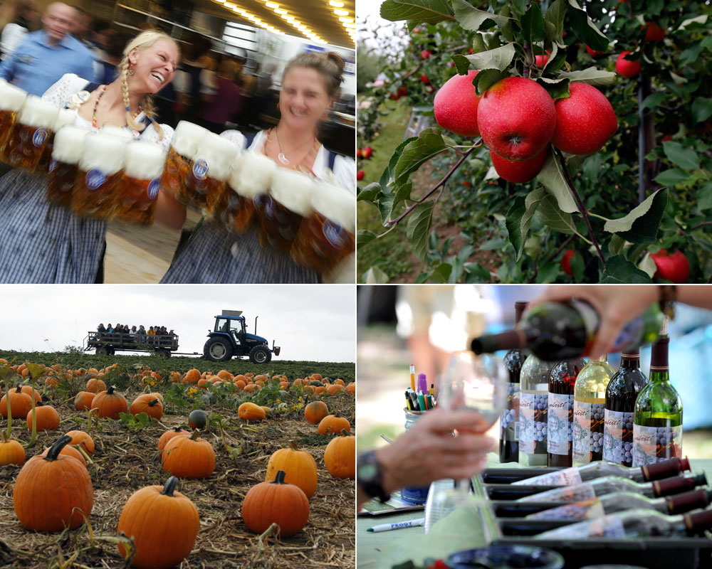 The best food and drink festivals of fall