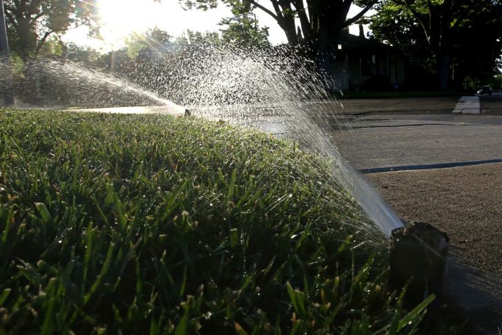 People And Pets Aren T The Only Ones That Need To Stay Hydrated During Scorching Heat Of Summer Garden Plot Editor Mike Mcgrath Shares Tips On