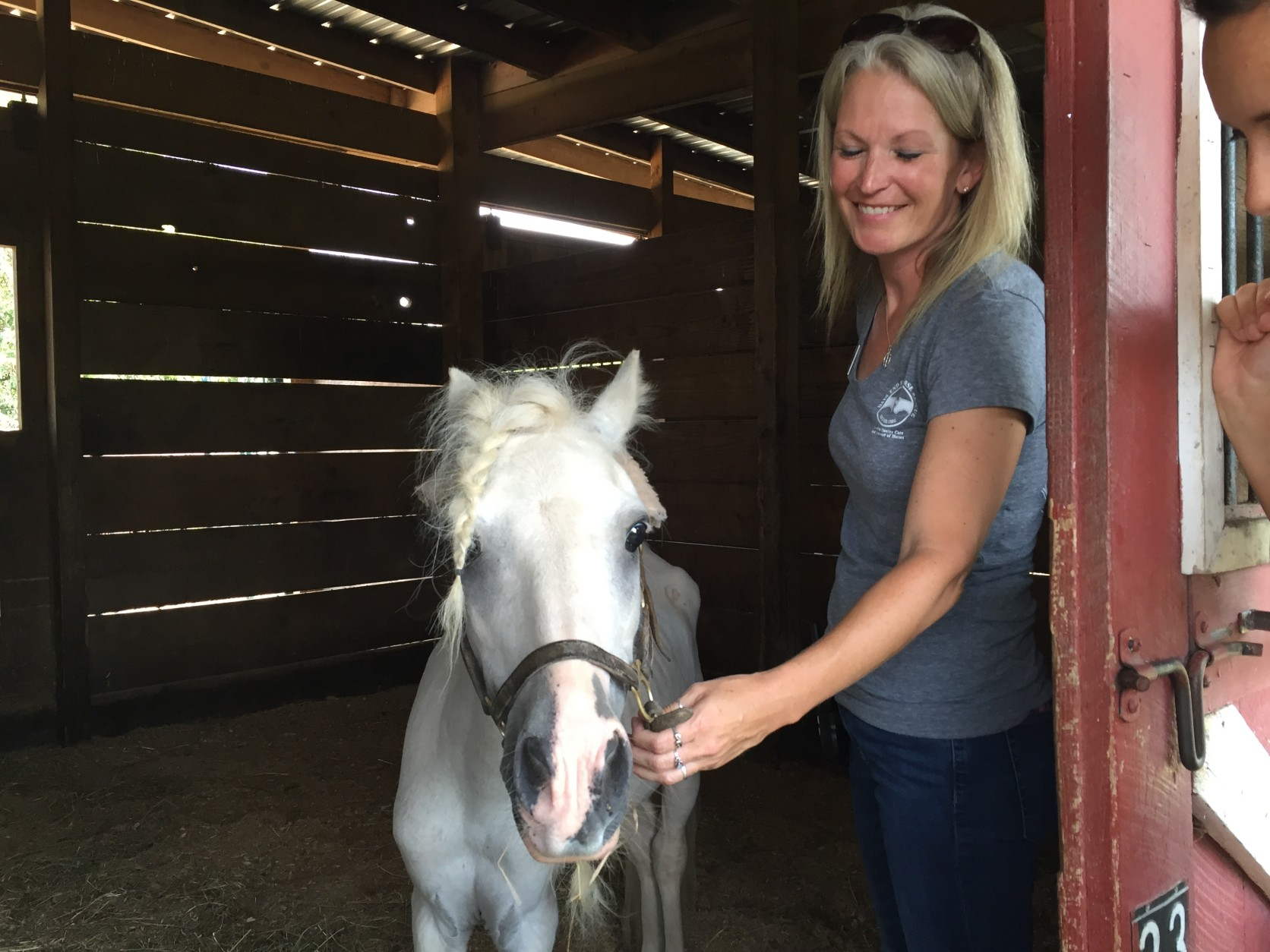 Here's another look at little Rio. Both neglected horses are in quarantine at the farm.  (WTOP/Michelle Basch)