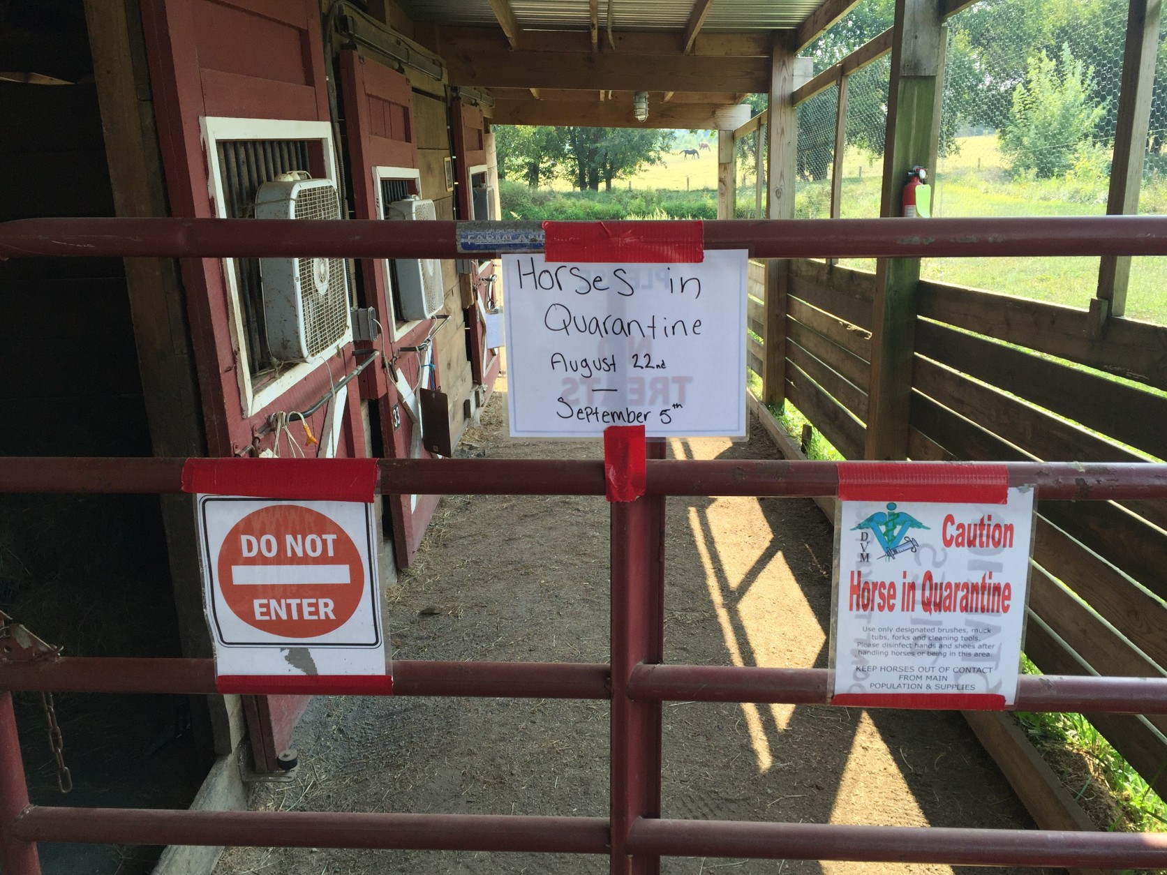 The two neglected horses are being kept in stalls behind this gate, separated from the other 75 or so horses at the farm. (WTOP/Michelle Basch)