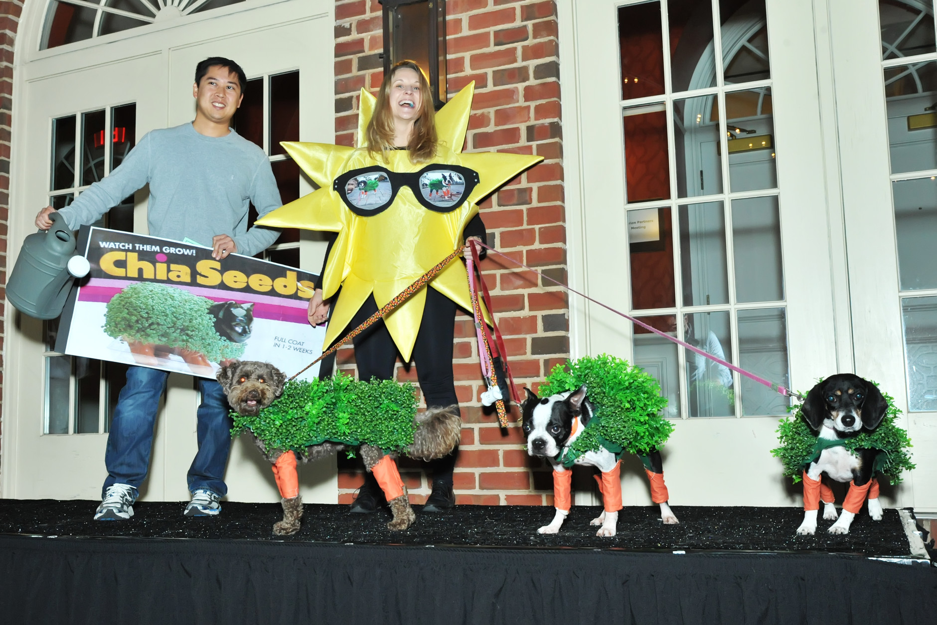 The winners for best group costume, the Chia Pets. (Shannon Finney Photography)