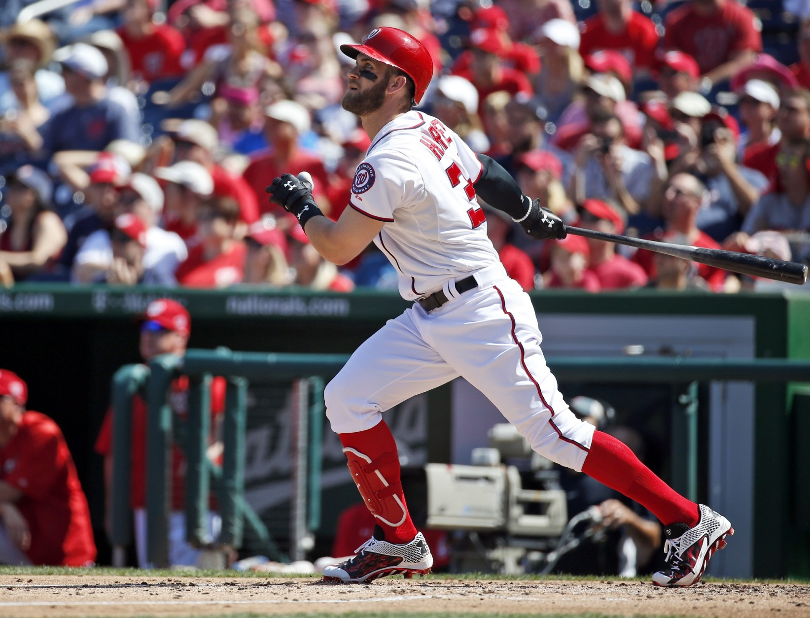 Nats' Harper a finalist for NL MVP