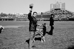Sam Sianis, owner of the Billy Goat Tavern in Chicago, center, acknowledges the crowd along with his goat prior to the start of the National League playoff game between the Padres and the Cubs, Tuesday, Oct. 2, 1984, Chicago, Ill. Sianis and the goat were invited as guests of the Cubs, both begin issued tickets. The man on the right is unidentified. (AP Photo)