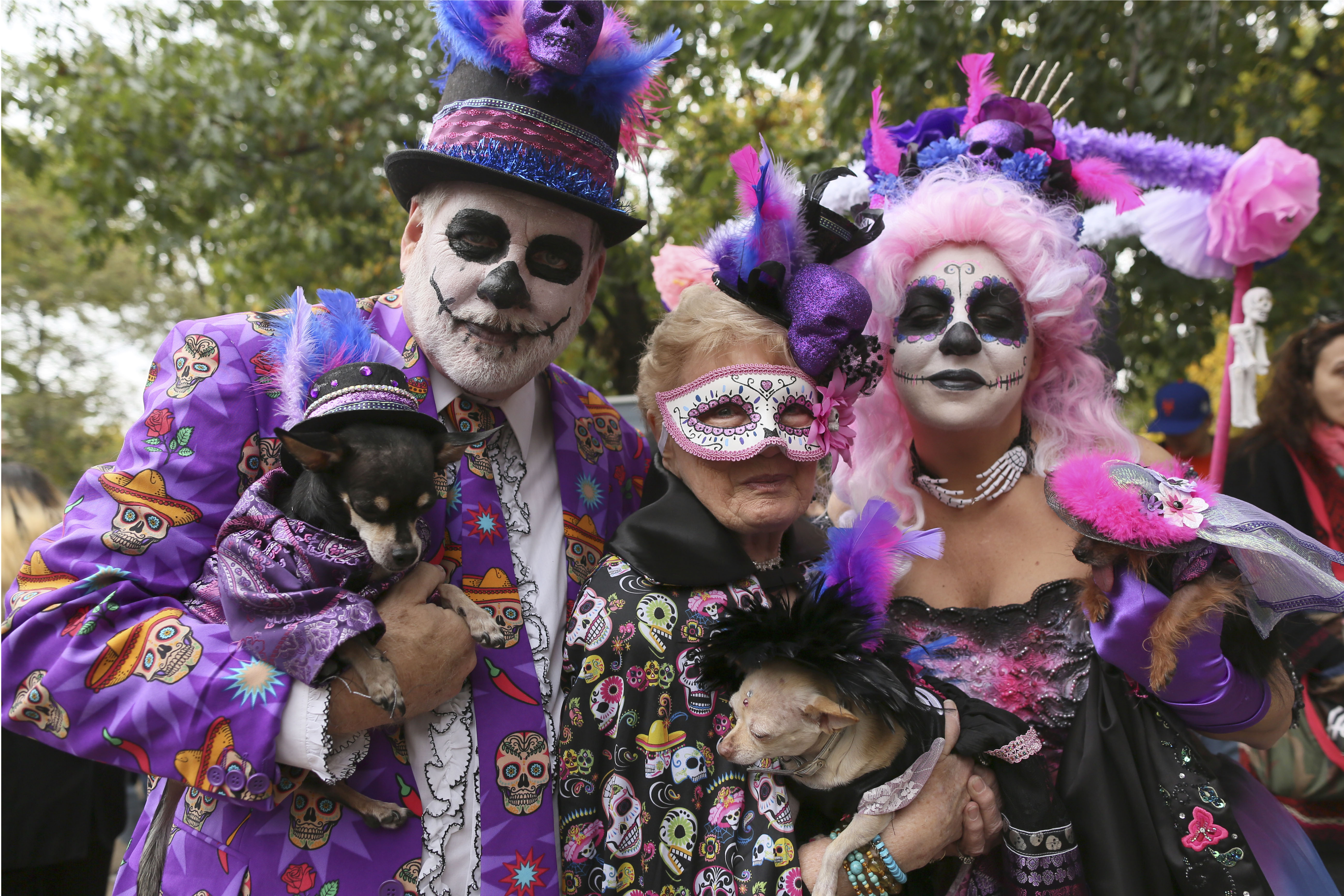 new york park goes to the dogs for 25th halloween dog parade wtop - Dallas Halloween Parade