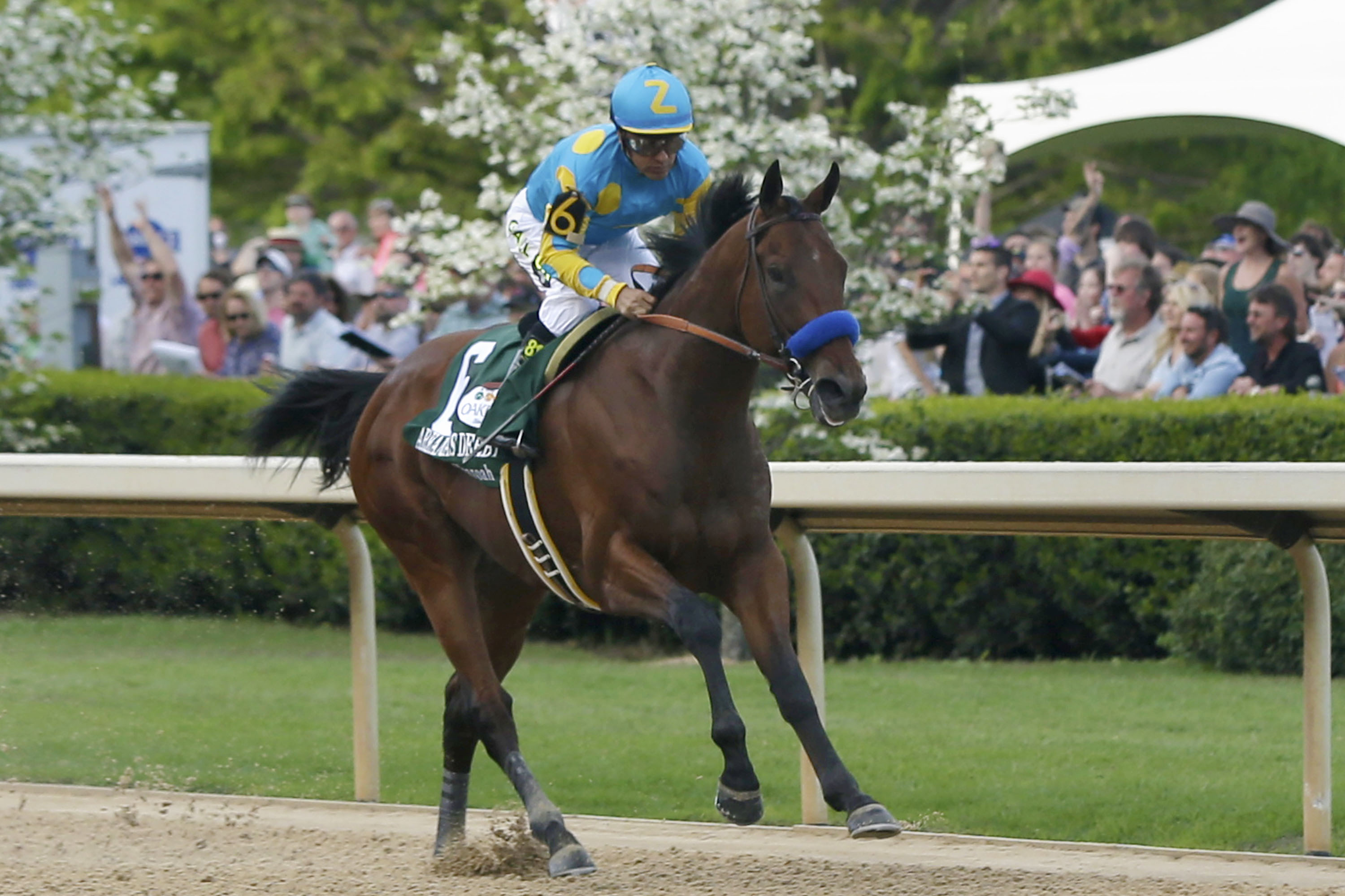 keeneland fall meet results online