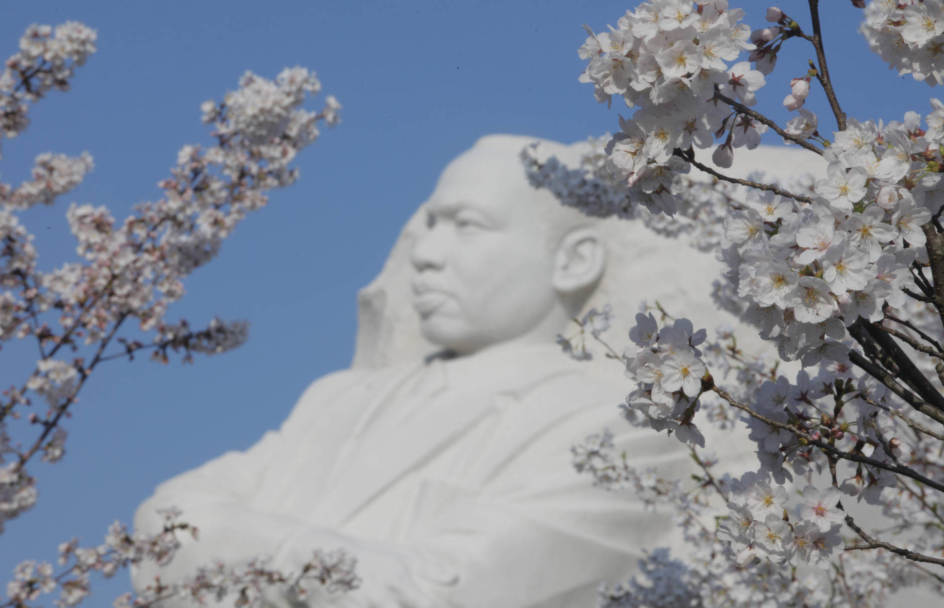 The Martin Luther King Jr. Day holiday will mean several changes to what is open Monday, Jan. 16. (AP Photo/Charles Dharapak)