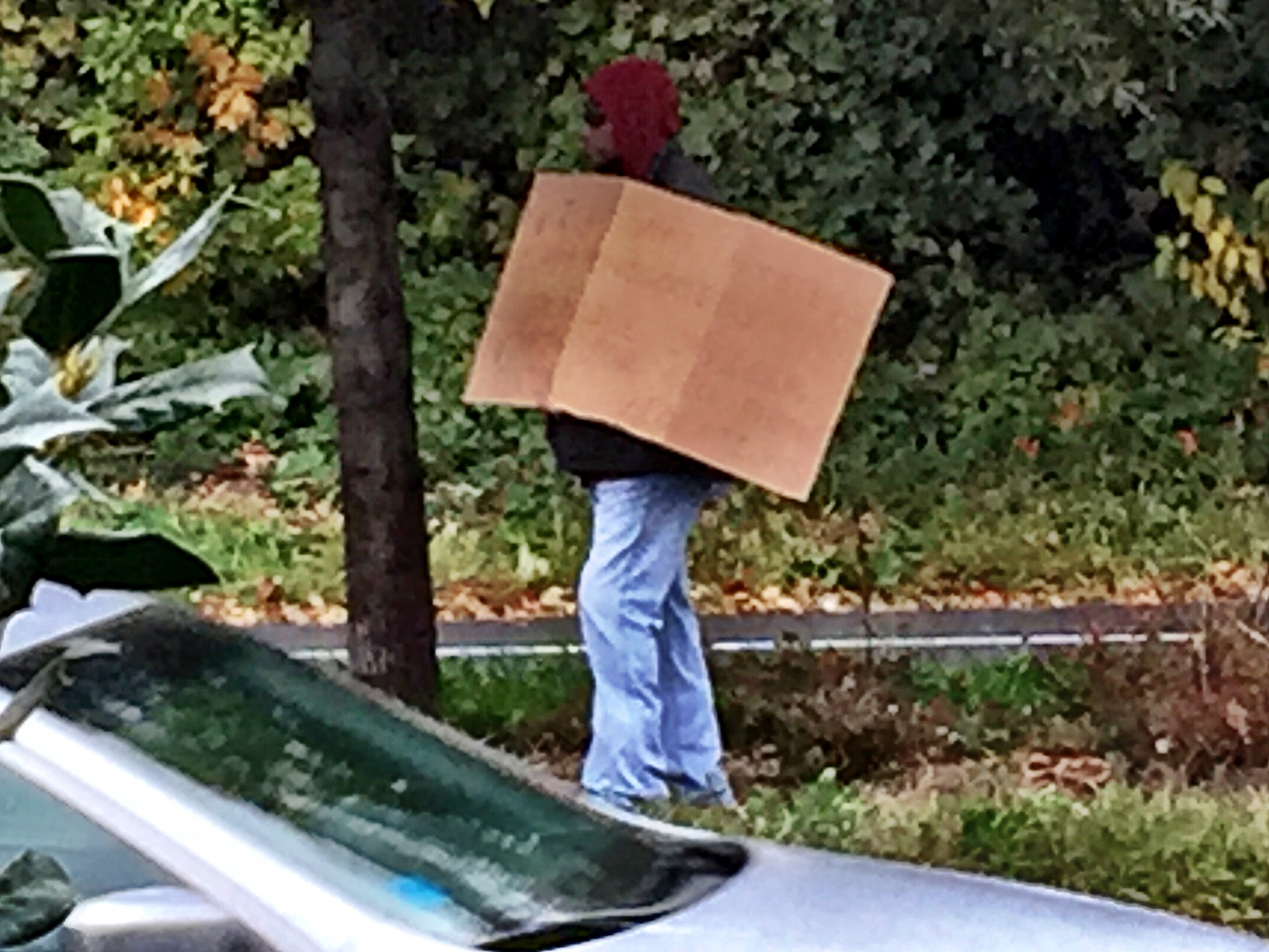 Police use homeless man disguise to catch drivers texting