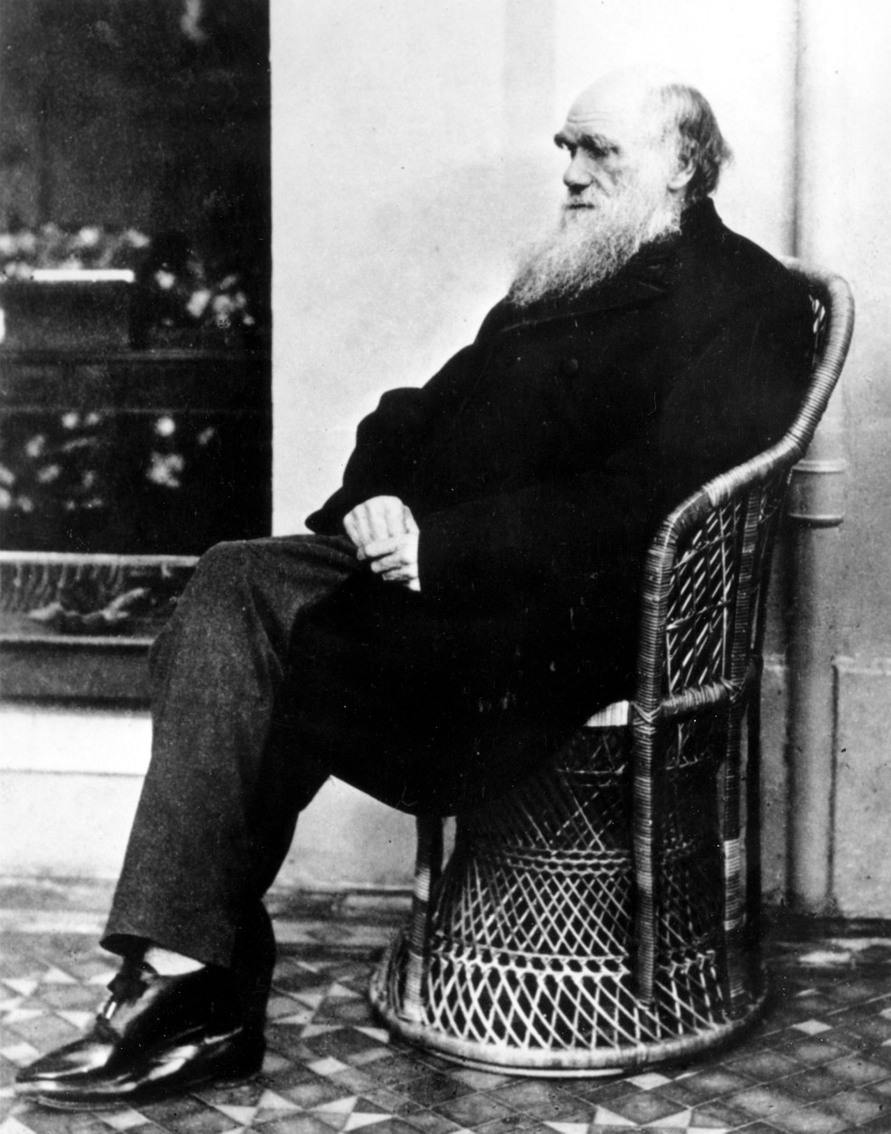 FILE - Charles Darwin poses in a wicker chair in 1875 at an unknown location. The father of evolution's ailments are the topic of an annual conference in Baltimore on Friday, May 6, 2011 that offers modern medical diagnoses for the mysterious illnesses and deaths of historical figures. The very travels that inspired Charles Darwin's theory of evolution and shaped modern biology may have led to one of the illnesses that plagued the British naturalist for decades and ultimately led to his death. (AP Photo, File)