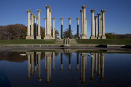 The U.S. Capitol's former columns still stand at the United States National Arboretum in Washington. (AP Photo/Carolyn Kaster)