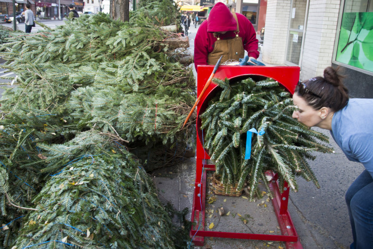 Elizabeth Benson, right, sniffs a Christmas tree she bought with her sister Kathryn from Rory Gilmartin,12, left, from Kenai, Alaska, as he wraps the.