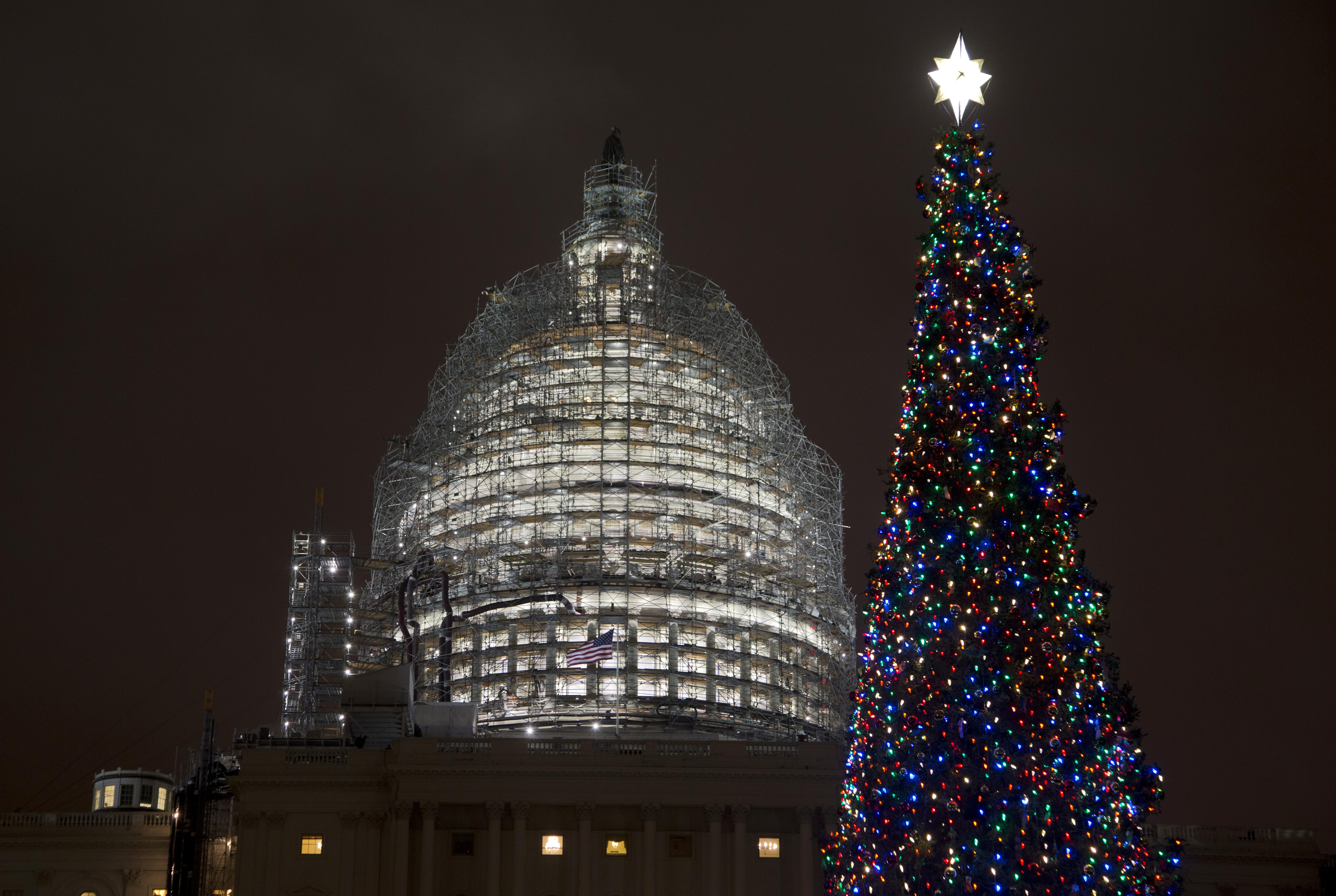 Lighting Of Capitol Christmas Tree