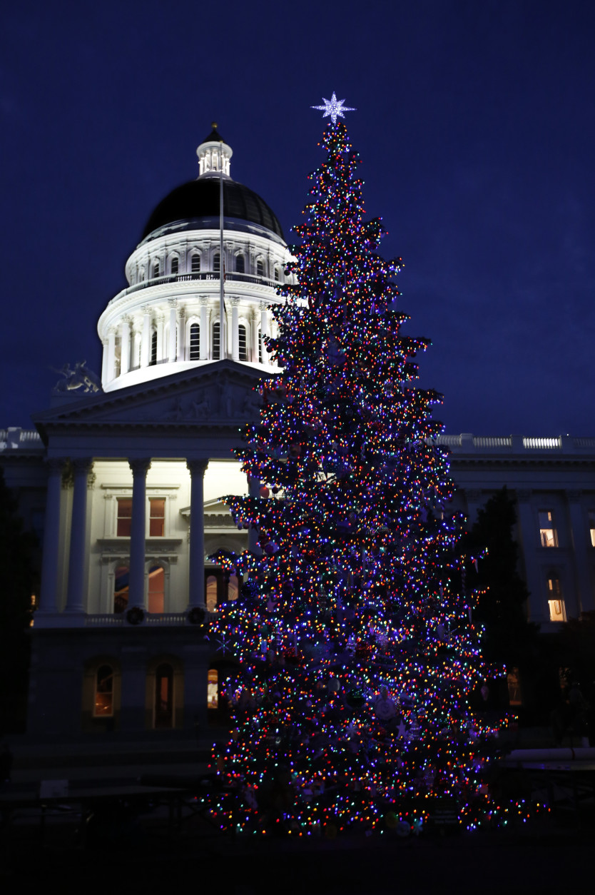 Lights from the Capitol Christmas tree glow in Sacramento, Calif., Wednesday, Dec. 2, 2015.  Gov. Jerry Brown had canceled the official lighting ceremony to honor the victims and families of the mass shooting at a San Bernardino facility that includes a center that helps people with developmental disabilities. The 61-foot tall white fir tree is decorated with more than 10,000 LED lights and 900 hand-crafted ornaments made by children and adults with developmental disabilities who receive services from the state's development centers and nonprofit centers.(AP Photo/Rich Pedroncelli)