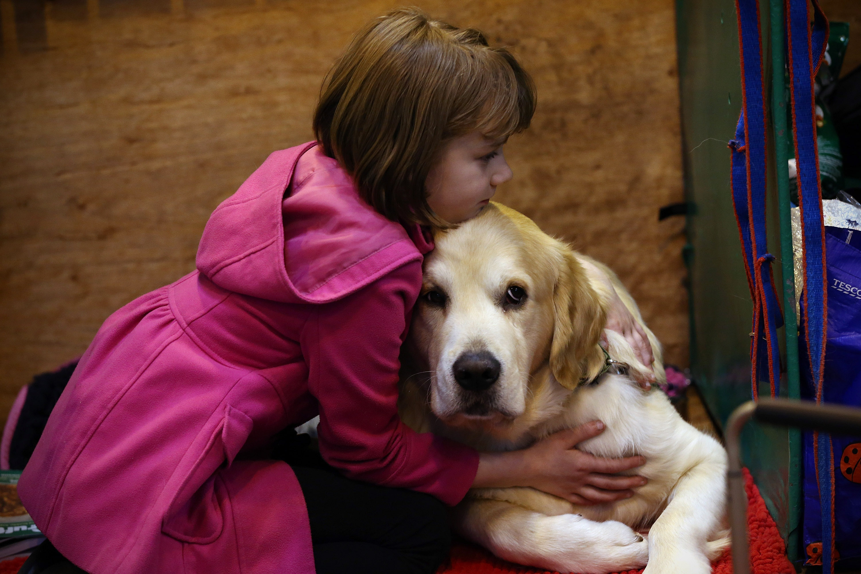 Pets lead to more emotionally healthy kids, study finds