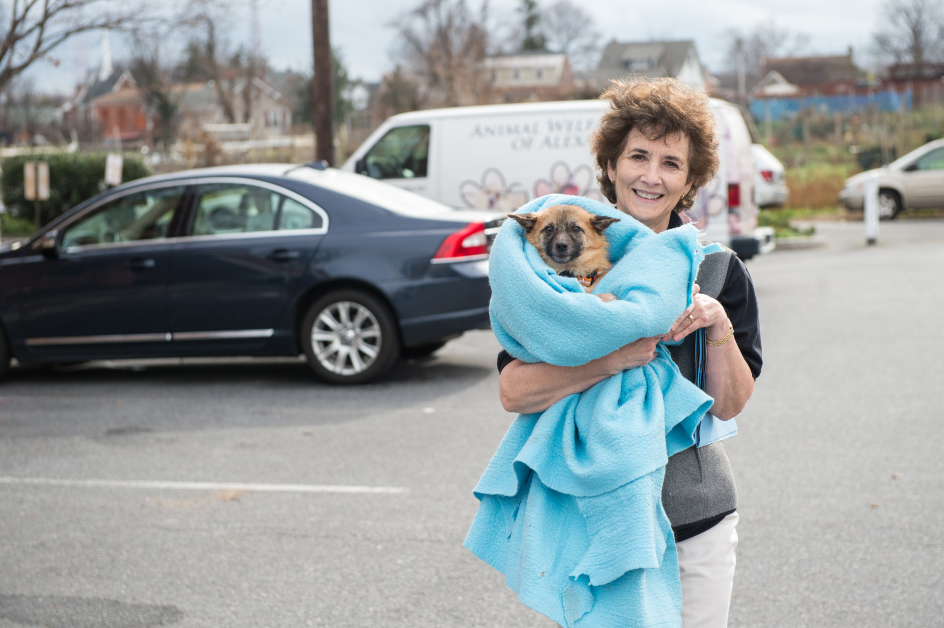 Dogs that arrived over the weekend from a dog meat farm in South Korea are picked up at the Washington Animal Rescue League by area shelters.  Here, a staff member of the Animal Welfare League of Arlington carries Gabriel to their vehicle for transport to the shelter. (Courtesy Meredith Lee/The HSUS)