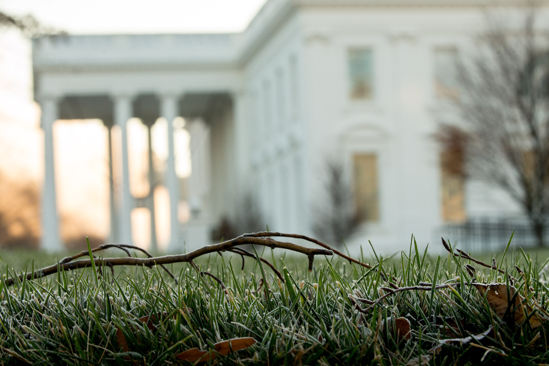 Frost is visible on the North Lawn of the White House, Sunday, Dec. 6, 2015, in early morning light in Washington. (AP Photo/Andrew Harnik)