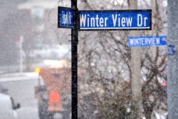 Steadier snow starts to fall in Alexandria, Virginia. (WTOP/Dave Dildine)