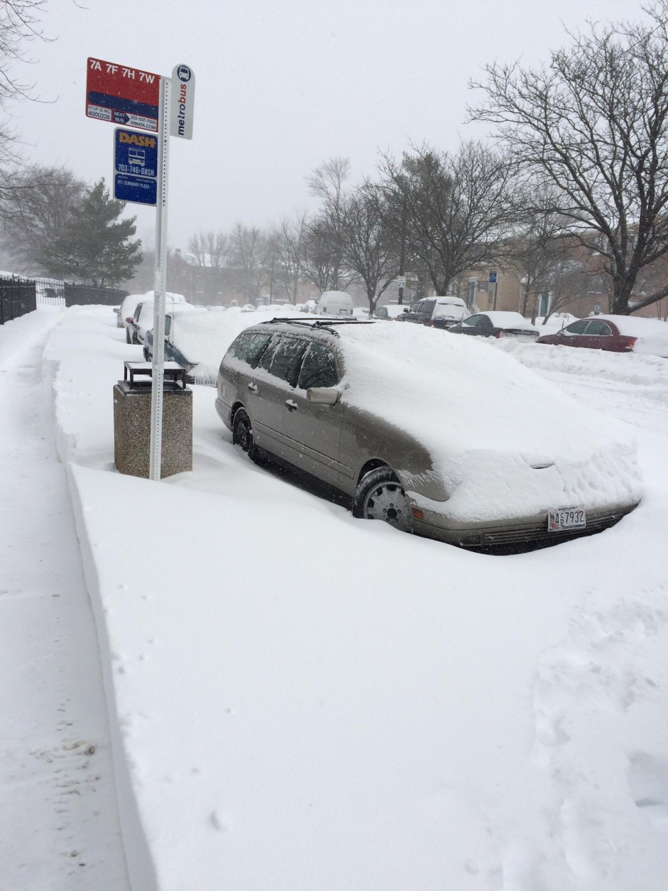 """""""This is at Quantrell Ave. Alexandria VA 22312. I measured 16 inches in one spot and 18 inches in another. The only people out were the snow blowers and people walking their dogs. It's a nice, light, powdery snow. Have fun!"""" (Courtesy WTOP listener Erika Wildrick)"""