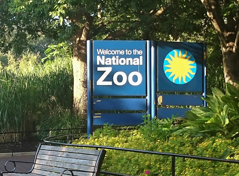 National Zoo attraction closed due to E. coli scare | WTOP