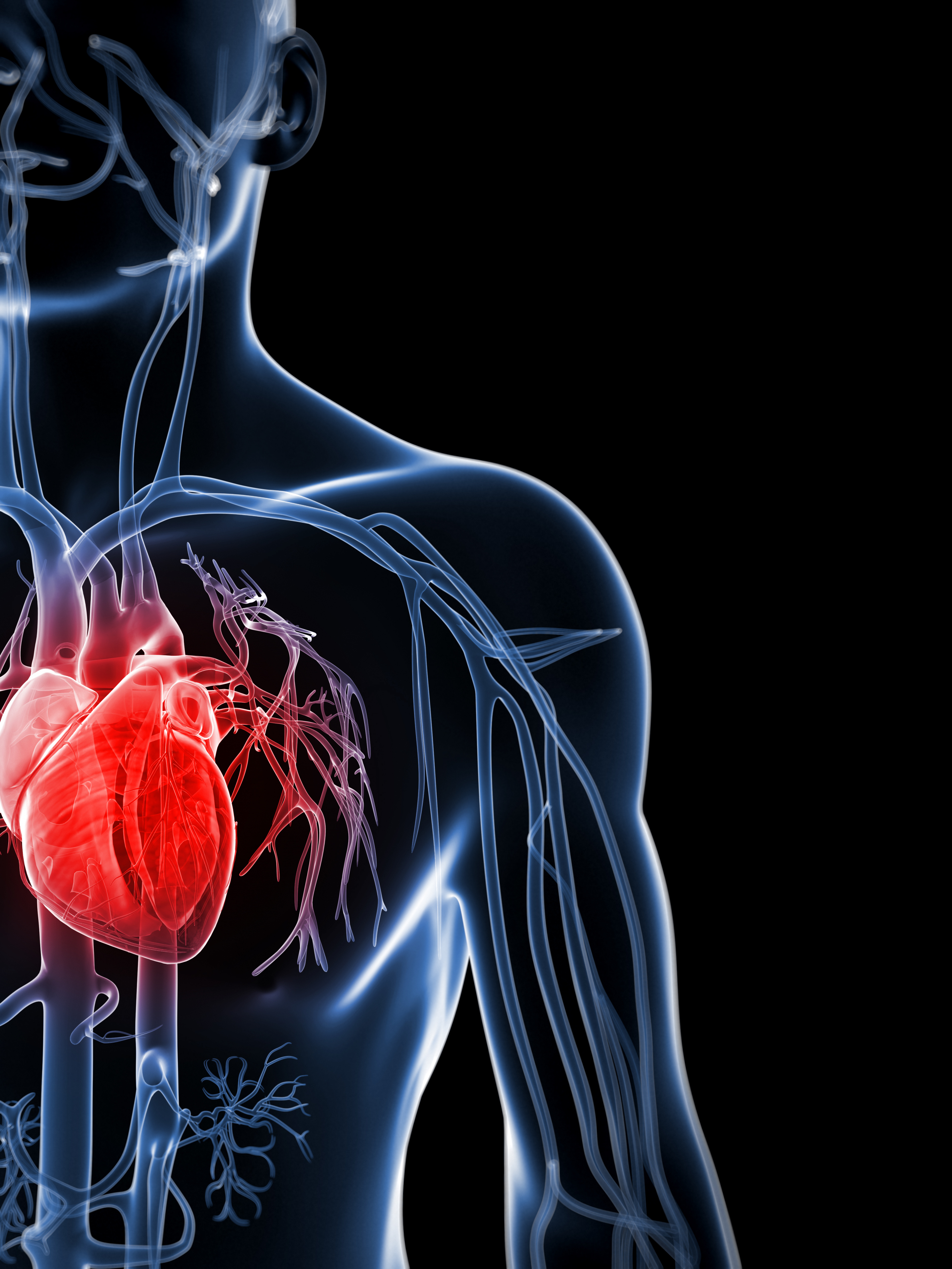 Heart health: Warning signs and lifestyle changes
