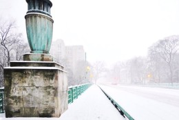 Snow begins to accumulate in Washington, D.C. on Friday, Jan. 22, 2016. (From Twitter user @dccitygirl)