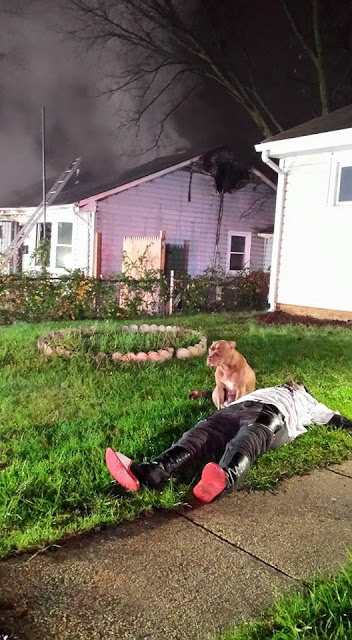 Md. woman guarded by pit bull after fire now faces arson charges