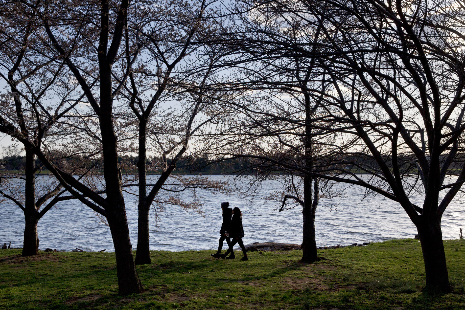 Two women are silhouetted by the Potomac River as they walk past cherry blossom trees that are not quite in bloom near the tidal basin in Washington, Monday, March 21, 2016. The cherry blossom trees are expected to hit peak bloom later this week, despite current cold temperatures, according to the National Park Service. (AP Photo/Jacquelyn Martin)