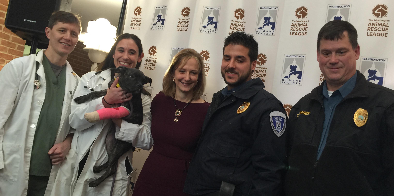 Two D.C. animal-rescue groups unite