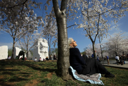 WASHINGTON, DC - MARCH 19:  Kitty Stoner of Annapolis, Maryland, sits against a tree in the warm weather as cherry trees blossom near the Tidal Basin March 19, 2012 in Washington, DC. This year marks the one hundredth anniversary of the cherry trees, which were originally a gift from Japan and werer planted on the National Mall.  (Photo by Alex Wong/Getty Images)