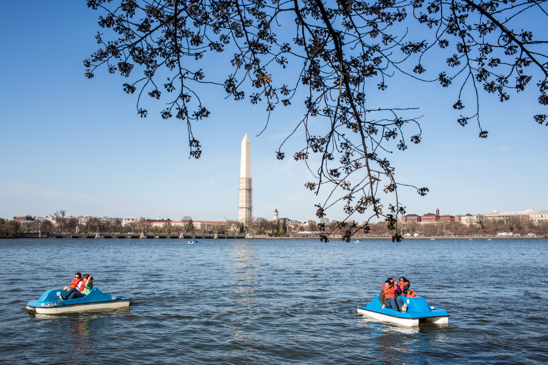 WASHINGTON, DC - APRIL 7: People cruise on paddle boats around the Tidal Basin where cherry trees are just beginning to bloom on April 7, 2013 in Washington, DC. The blossoms are late this year, a result of a cooler than average spring. (Photo by Brendan Hoffman/Getty Images)