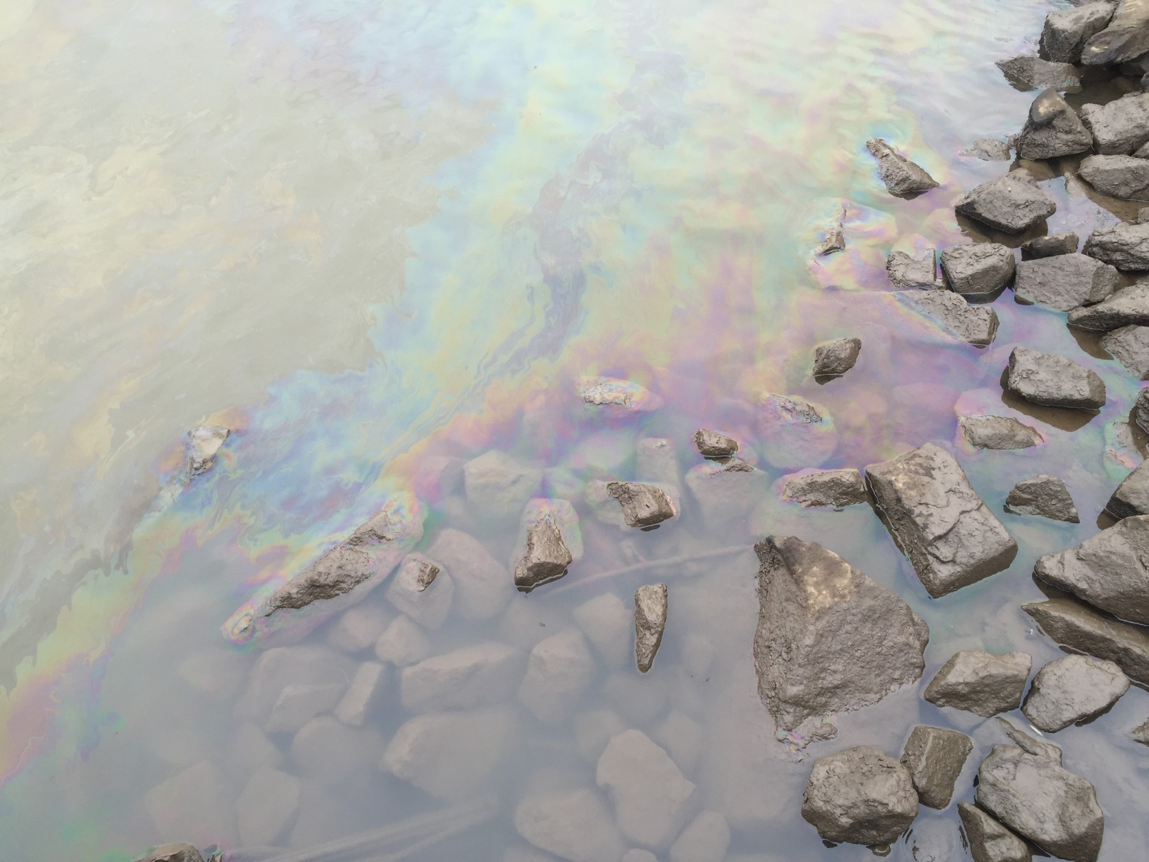 A rainbow-colored oil film can still be seen in the water near Gravelly Point Park. (WTOP/Mike Murillo)