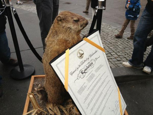 Dead groundhog Potomac Phil predicts early spring, nasty political climate