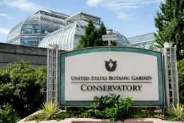 United States Botanic Garden, Wednesday, Aug. 19, 2015, in Washington. (AP Photo/Andrew Harnik)