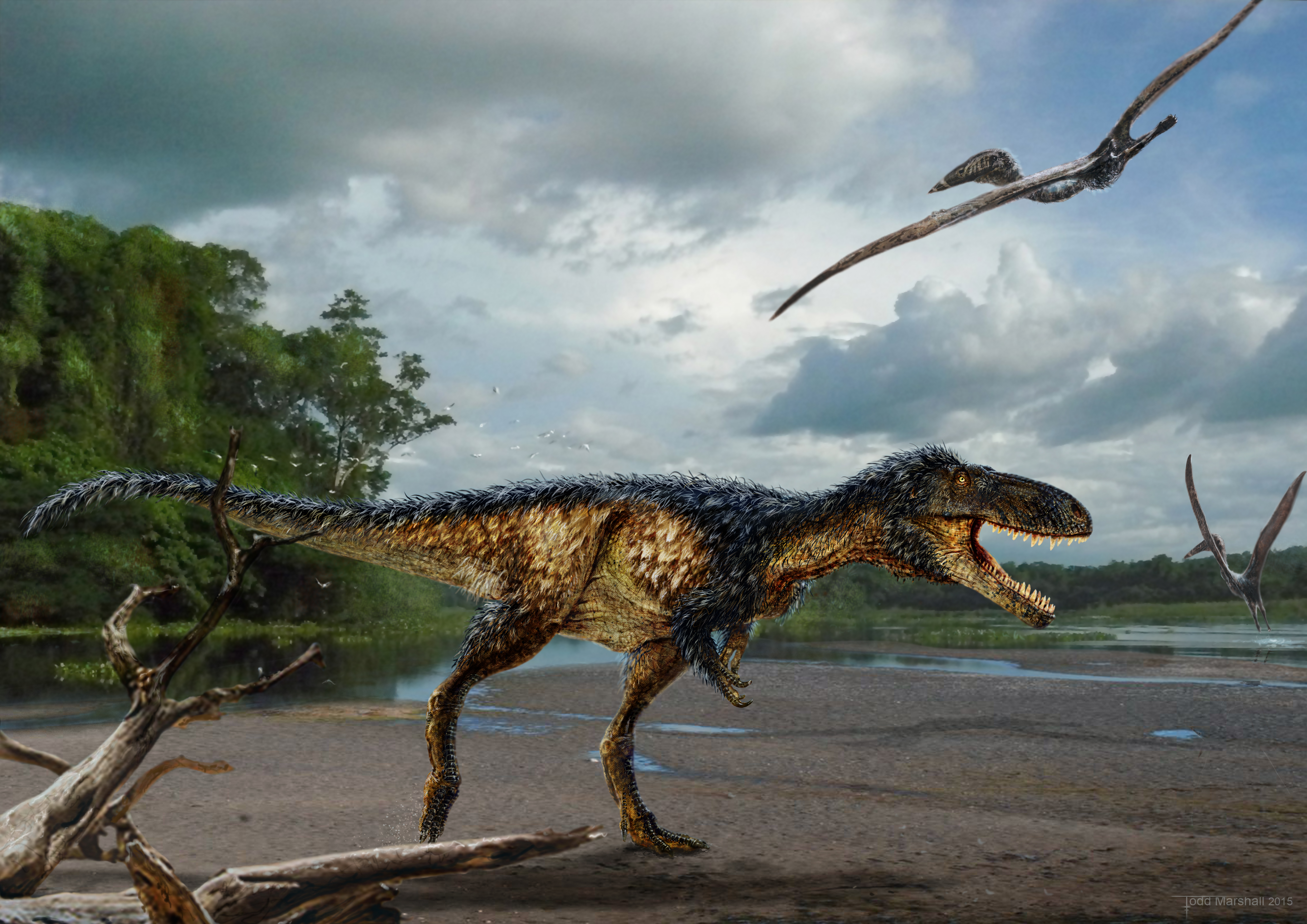 New dinosaur species in tyrannosaur family discovered