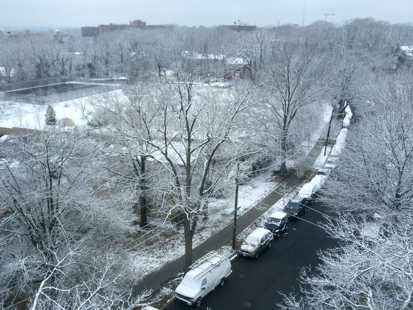 A street view of the snowfall in D.C. (WTOP/Dave Dildine)