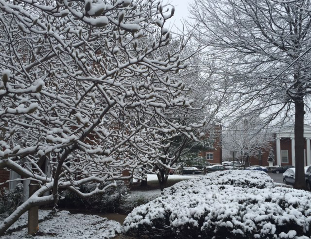 Light snowfall leaves behind lovely scenery