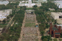 FILE - In this April 25, 1993, file photo, this view from atop the Washington Monument shows people gathered for the National March on Washington for Gay and Lesbian Rights in Washington. (AP Photo/Mark Wilson, File)