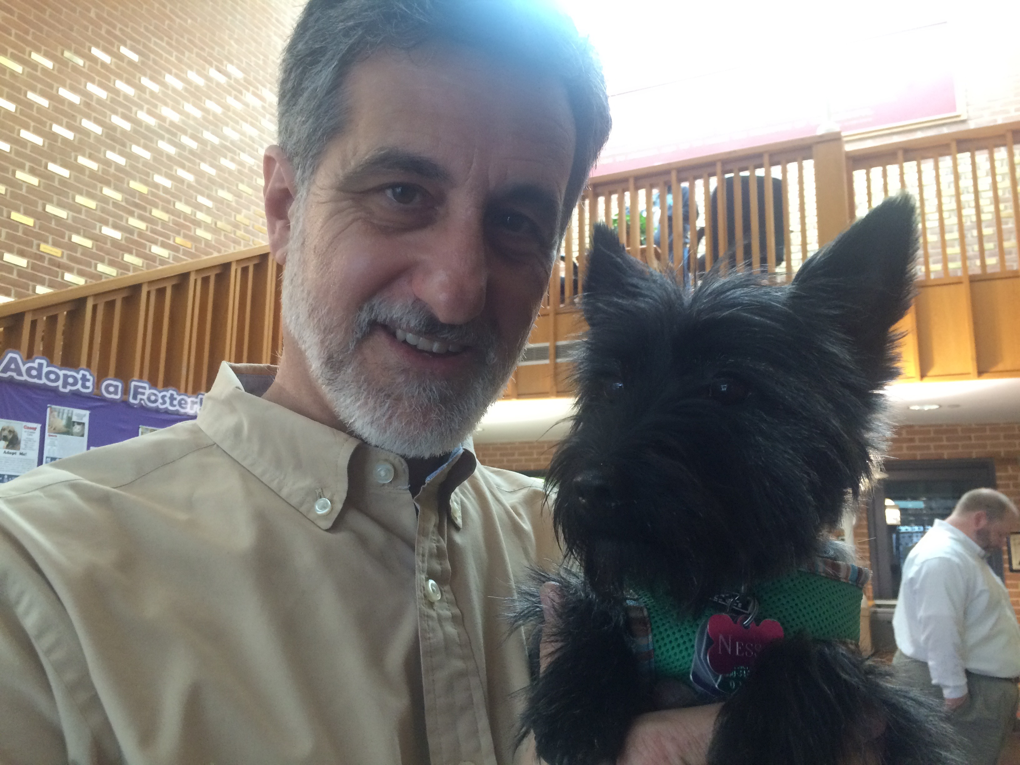 Broadway legend teaches old rescue dogs new theatre tricks