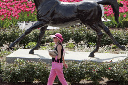 A horse racing fan makes her way past the statue of Aristide, the first Kentucky Derby winner, in the paddock area at Churchill Downs, Saturday morning, May 7, 2005, in Louisville, Ky. The Kentucky Derby is the 10th race of the day. (AP Photo/ Darron Cummings)