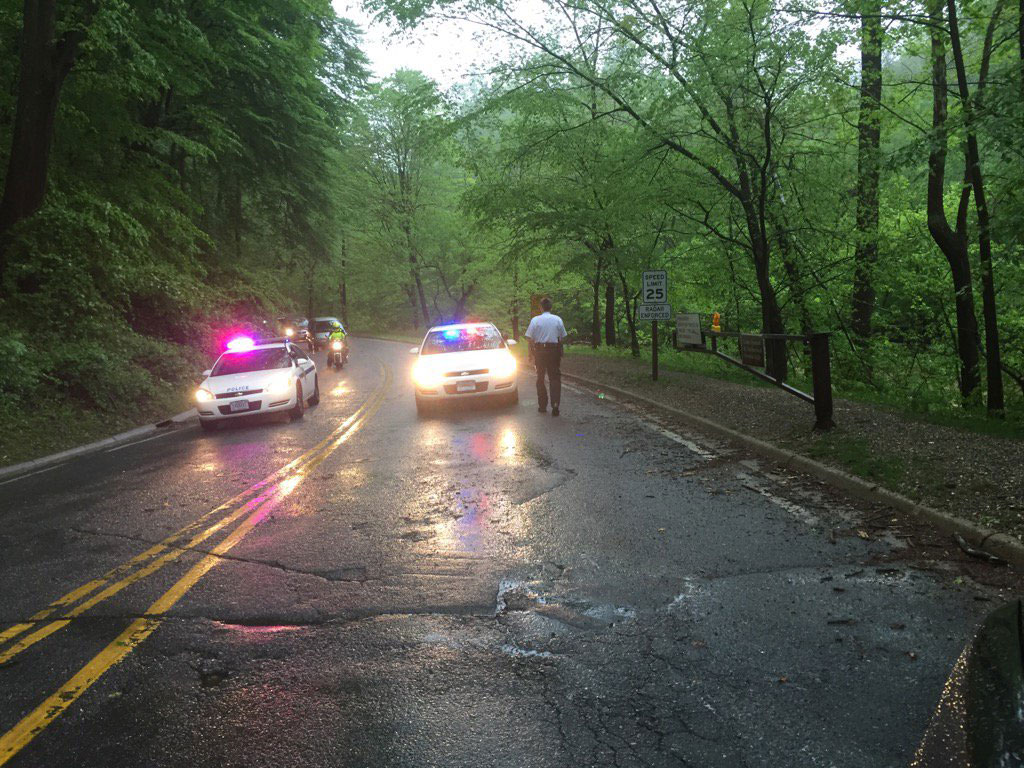 Rain snarls roads, downs trees, knocks out power in area