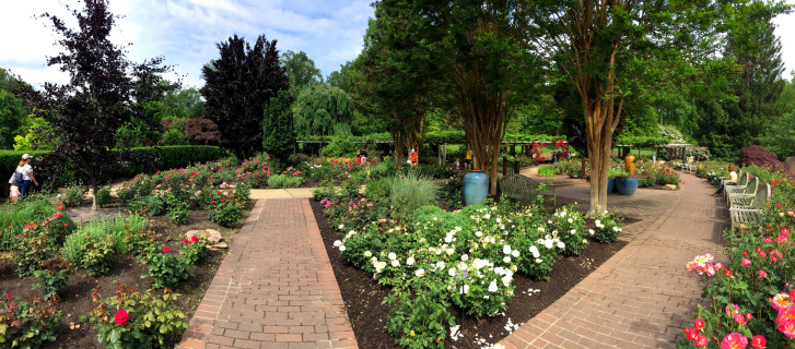 Photos: Stopping to smell the roses at Brookside Gardens | WTOP
