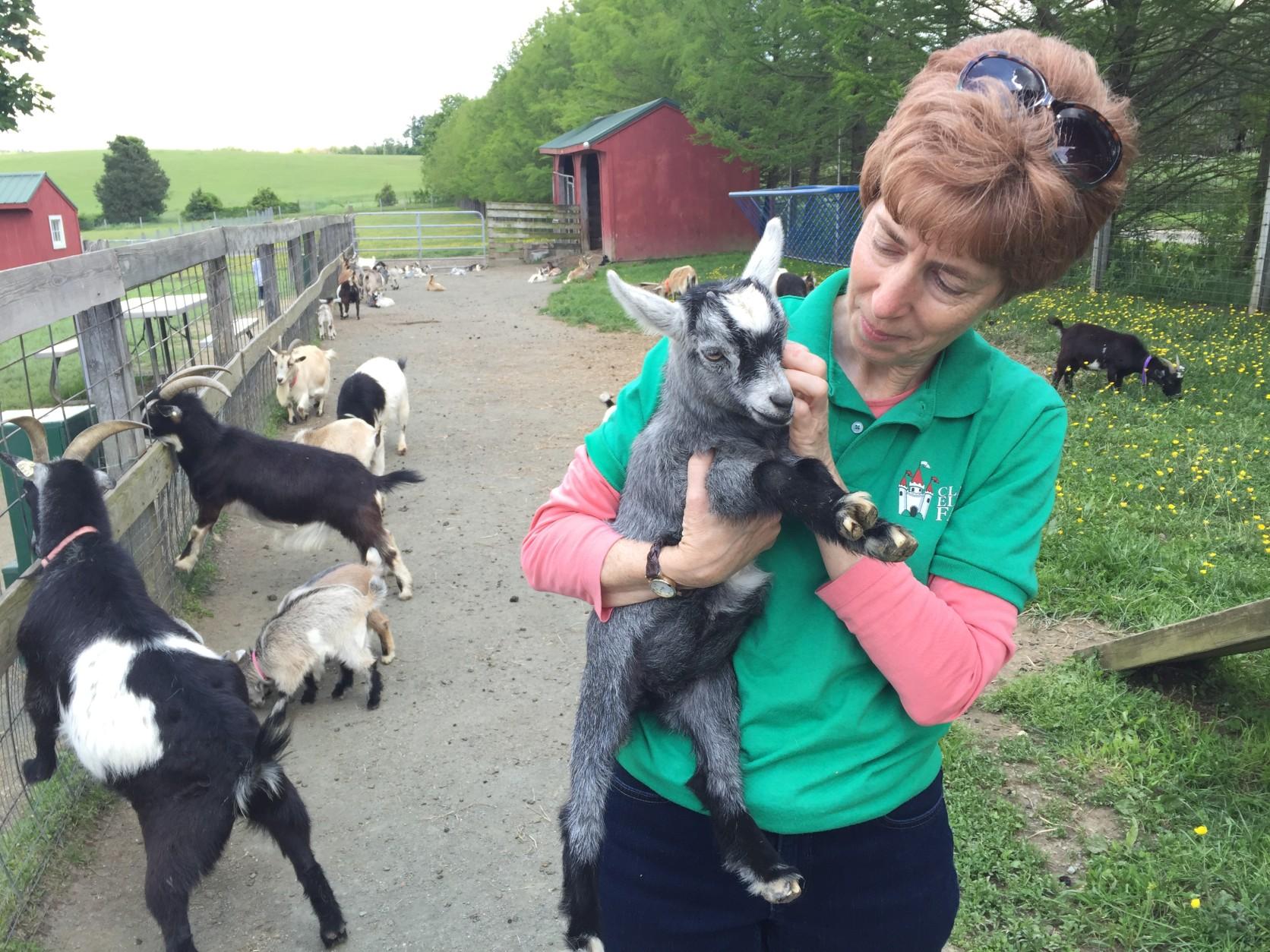 Clark's Elioak Farm owner Martha Clark holds one of the farm's 19 baby goats. (WTOP/Michelle Basch)