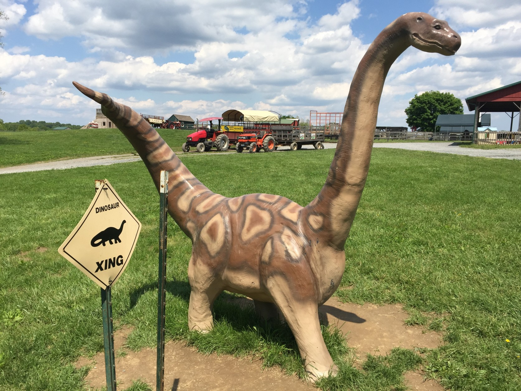 This happy dinosaur is one of the many other attractions at Clark's Elioak Farm. In the background is the farm's popular hayride. (WTOP/Michelle Basch)