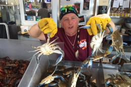 Clarence Goodman, with Jessie Taylor Seafood, local distributors have come up short, and only 5 to 10 percent of their supply is coming from the Chesapeake Bay. (WTOP/John Aaron)