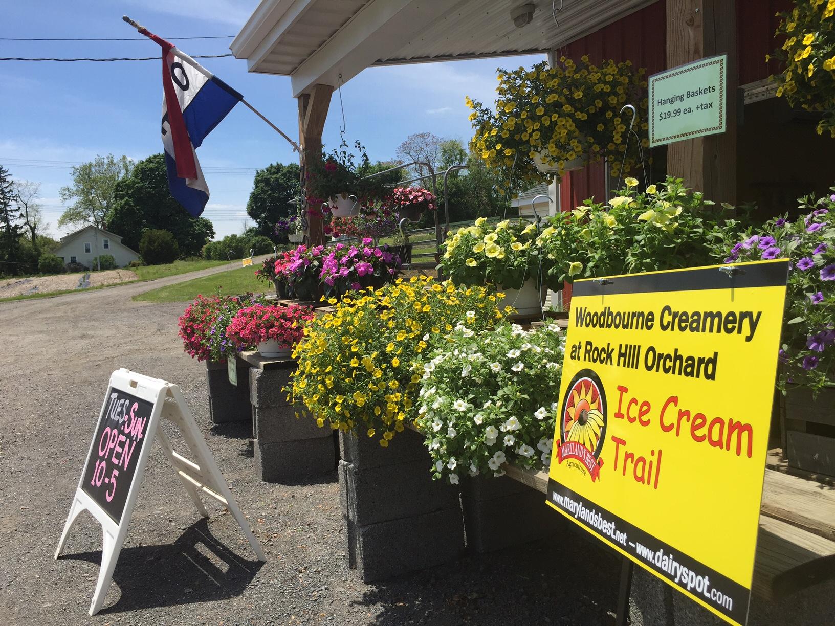Photo of Woodbourne Creamery