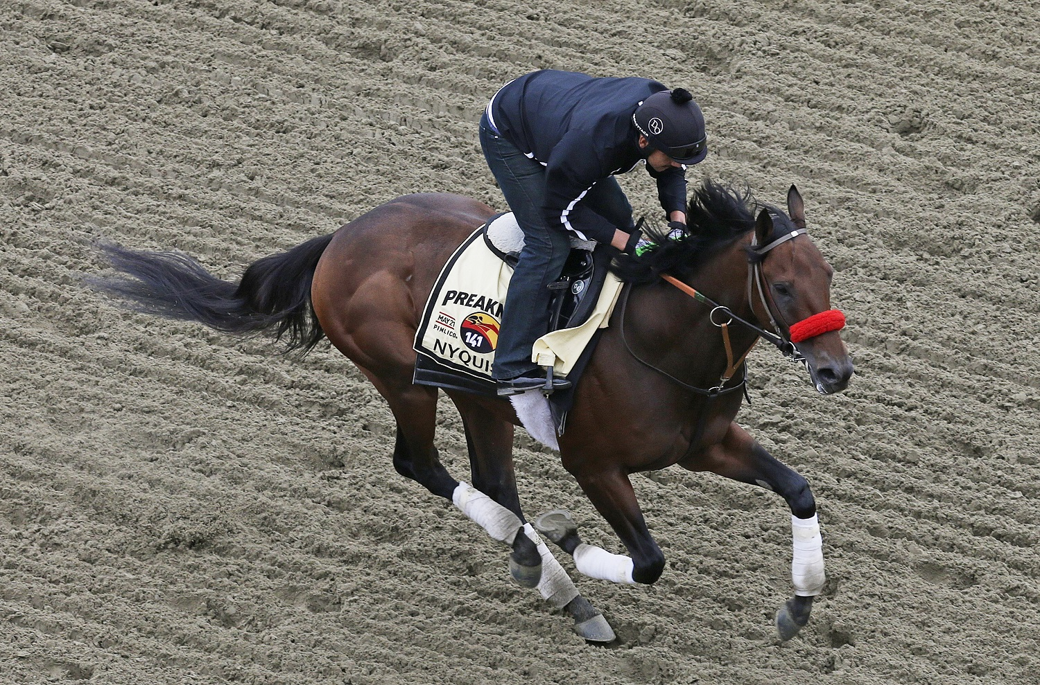 Predictions and odds for 141st Preakness Stakes