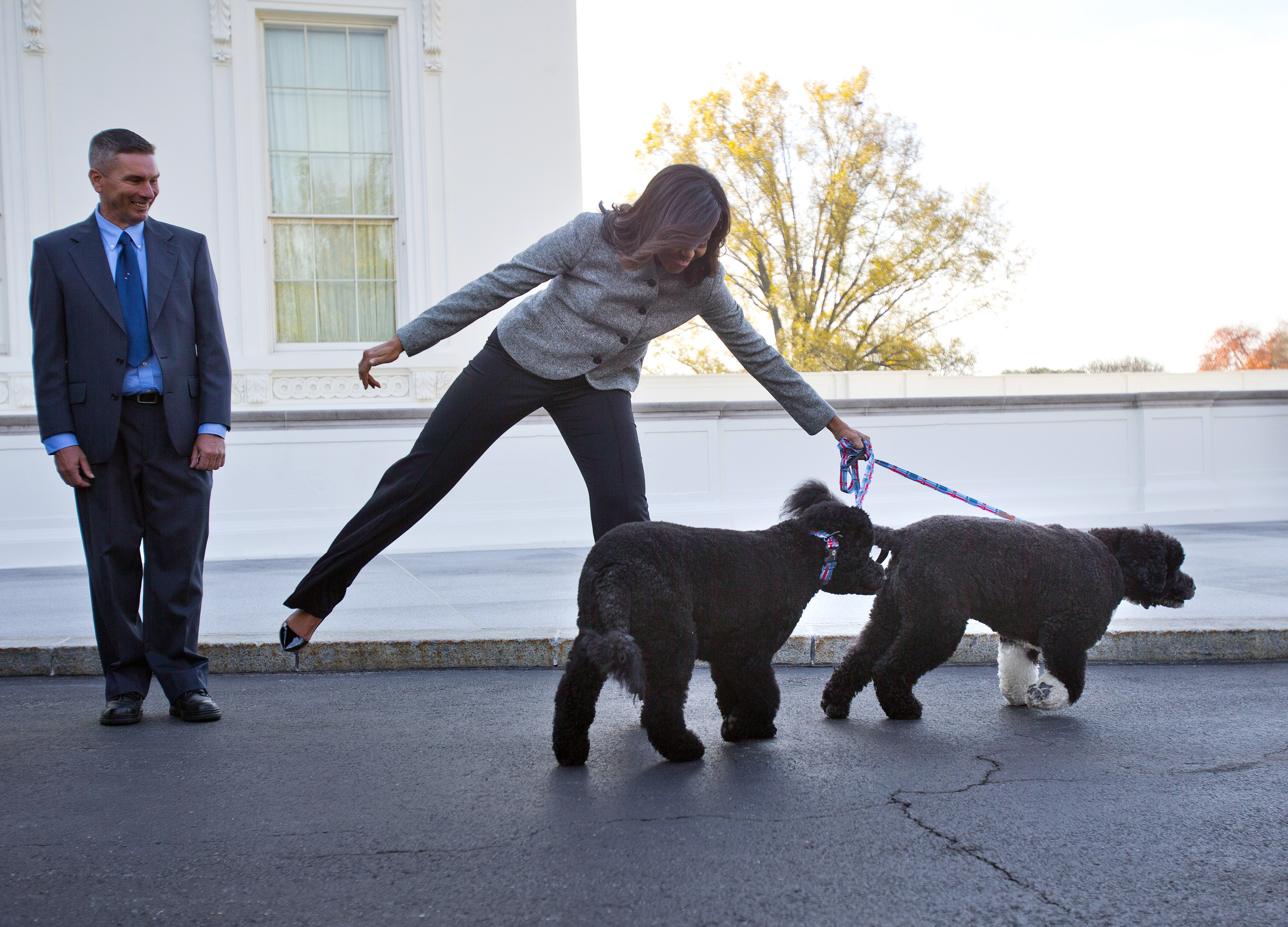 hardly a dog u0027s life for obama u0027s pets bo and sunny wtop