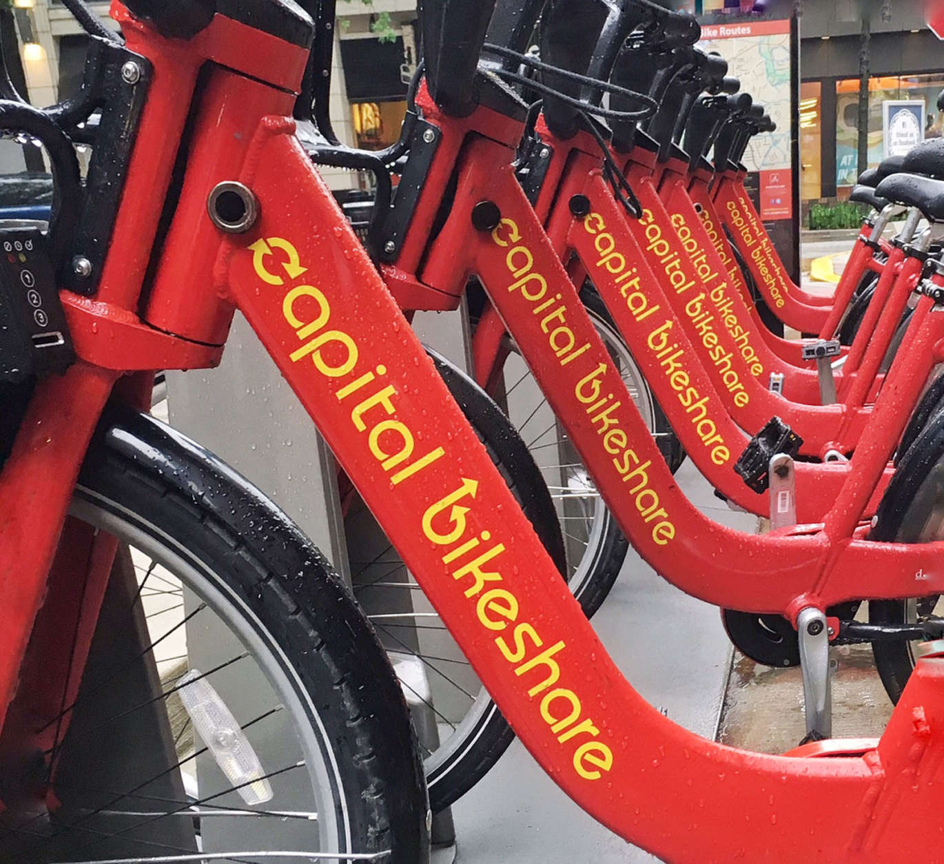 Capital Bikeshare is the D.C. area's bike-sharing system but a DDOT official says there's room for competition. (WTOP/Kate Ryan)