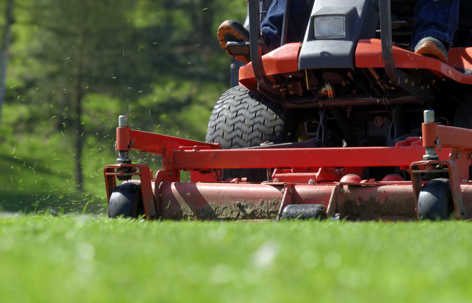 Resolve to have a legal — and healthy — lawn this season