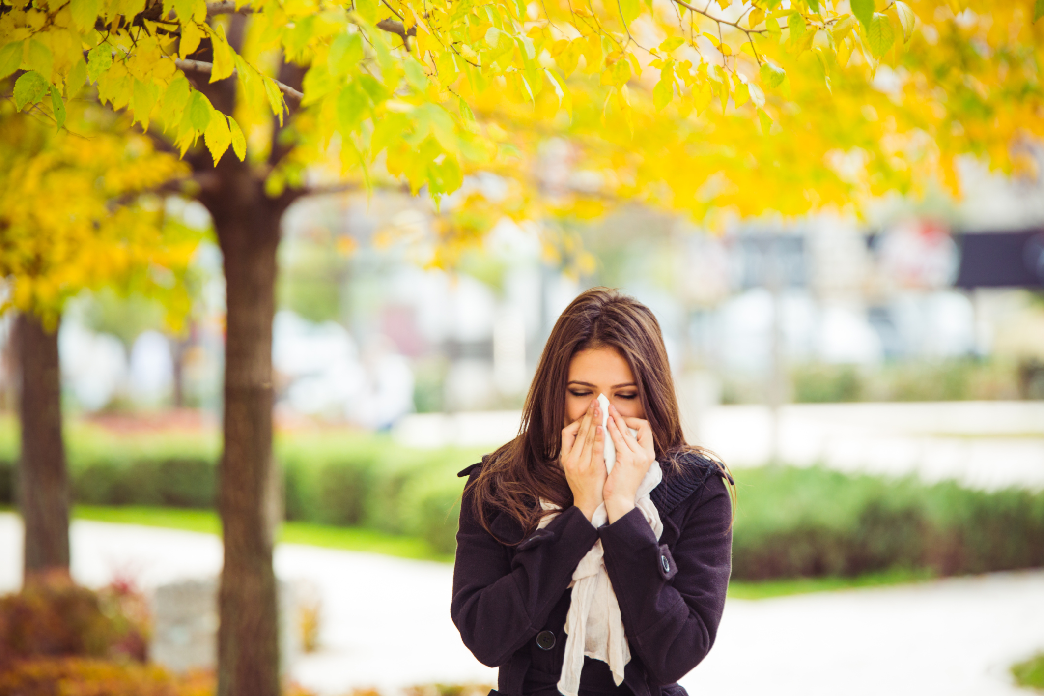 6 ways to control allergies in your home